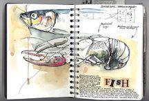 Luonnoskirjoja/Sketchbooks
