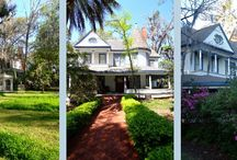 Local Weekend Adventures / Adventures in Tallahassee and the surrounding area.