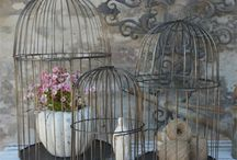Jolies cages