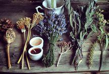Herbs & DIY