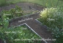 garden ideas / by Adele Crozier