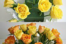 Florals & Flowers