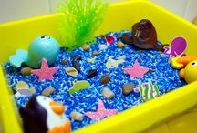 Sensory Tubs and Science / by Danielle Danver