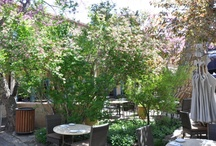 Santa Fe Patio Dining / When the weather is warm, Santa Feans and visitors want to dine outside. The city is filled with charming hidden dining patios and courtyards and outdoor street-side dining great for people-watching.