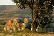 život na venkově