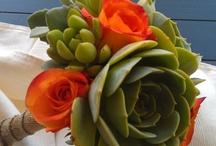 Succulent favourites inspiration