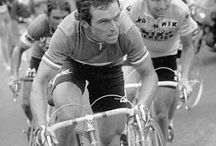 hinault / by shane t