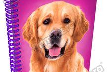 Cuadernos Puppies / Línea Escolar Primavera Regresa a Clases con TODO