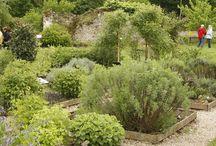 Jardin écologique au naturel