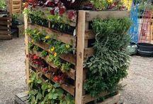 Pellet gardening