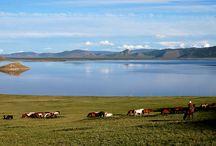 Horseback Mongolia / Horseback Adventure propose à une clientèle francophone et anglophone différentes sortes de circuits à la découverte du pays, de ses richesses naturelles, de son patrimoine et du mode de vie de ses habitants. Nous vous accueillons en Mongolie durant toute la saison estivale mais également en période hivernale pour les voyageurs en quête d'aventure extrême !