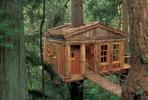 Treehouses / by Cindy Kemp