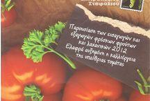 Magazines / Tomaccini & Samos Pops products