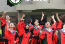 OWSD PhD Fellowships & Other Top Scholarships