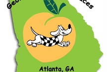 Georgia Dachshund Races / Everything Georgia Dachshund Races and other Doxie races.