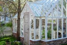 Växthus, greenhouse