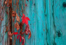 Aqua and red / The best colour combo