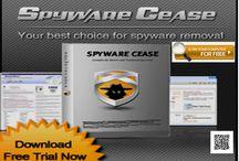 Software & Service