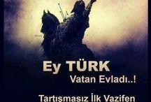 ŞU ÇILGIN TÜRKLER / Türk devletleri Türkiye