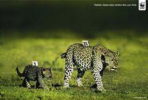 Publicidade / by Totty Souza
