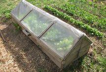 Frühbeete (Recycelt & Neu) / Ideen für Frühbeet. Sowohl recycelte und DIY Versionen, als auch moderne Versionen...