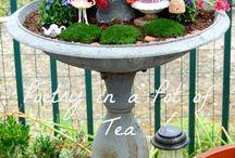 Herb Garden / Herbs