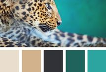 COLOR ANIMALES