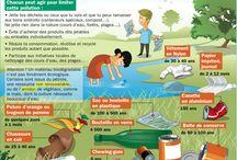 Teaching Ideas:  French Environment