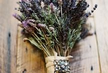 Lavender & Beige / Wedding inspiration Rustic influences from Provence meets the charm of Kent.