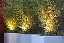 Moderne Ibiza tuin