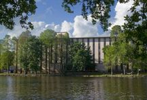 Herget Hall / by LSU Residential Life