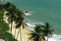 Estados do Brasil - Paraíba / Você conhece a Paraíba?