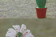 Beautiful BEADED cacti