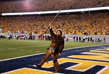 Mountaineer sports / West Virginia is home to the West Virginia University Mountaineers, now a member of the Big 12 Conference.  / by charleywest