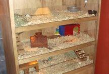 Casas para coelhos