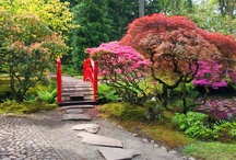 Clingendael Park Japanese Garden , Netherlands / Had a lovely day and took some photo's