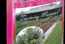 plantes business