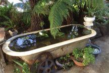 Bath Tub Garden
