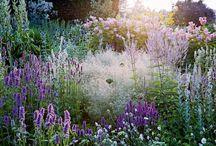 garden at an exibition