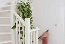 Interieur - Planten