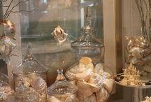 Seashell Collections & Decor