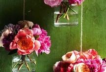flowers / by Sonia Carvalho