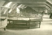 Le musée au début du 20e siècle / Il n'existe que très peu de photographies du musée du début du 20e siècle. Cette série de photos issues des archives du musée date probablement de la fin des années 1920, époque ou les plans-reliefs furent classés au titre des monuments historiques, le 22 juillet 1927.