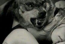 *2018#Wolf$*