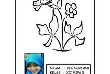 viano / My name is Via Noviani