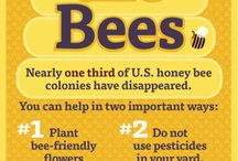 Save tue bees