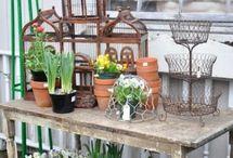 Garden & Backyard ideas