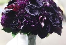 Flower Types / by Olga (Landish Studio) Friedman