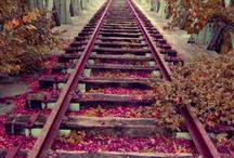 Koleje a vlaky
