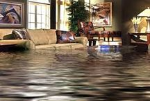 Water damage adjuster | Public Adjuster / A water damage adjuster is very useful person as a water fiasco can strike at whatever time anyplace. By and large the events are sudden and unforeseen and the harms are regularly extremely hard to identify contingent upon the particular way of the misfortune.